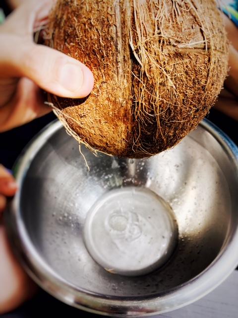 creamy-coconut-milk-4