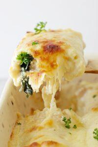 making lasagna roll ups